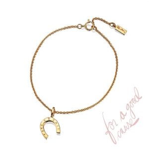 Take No Shit Bracelet Gold - Efva Attling armband - Snabb frakt & paketinslagning - Nordicspectra.se