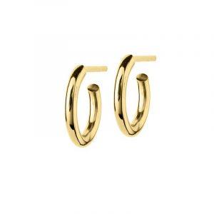 Hoops Earrings Gold Small - Edblad - Snabb frakt & paketinslagning - Nordicspectra.se