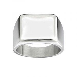 Cole Signet Ring Steel - Edblad - Snabb frakt & paketinslagning - Nordicspectra.se